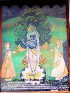 ShreeNathji as ShreeKrishn