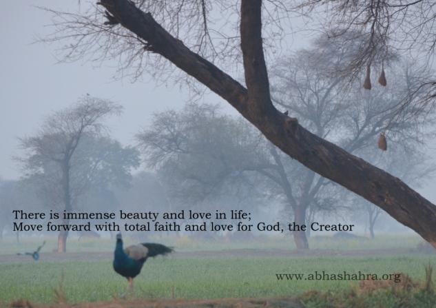 abhashahra.org