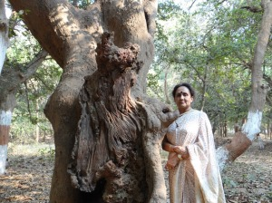 At the Radha krishn tree.