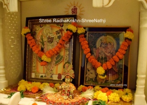 Shree RadhaKrishn-ShreeNathji Pariwar