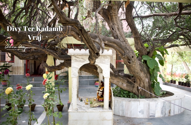 Ter Kadamb, Nandgaon Ter Kadamba is located just 1.5 km from Nandgaon